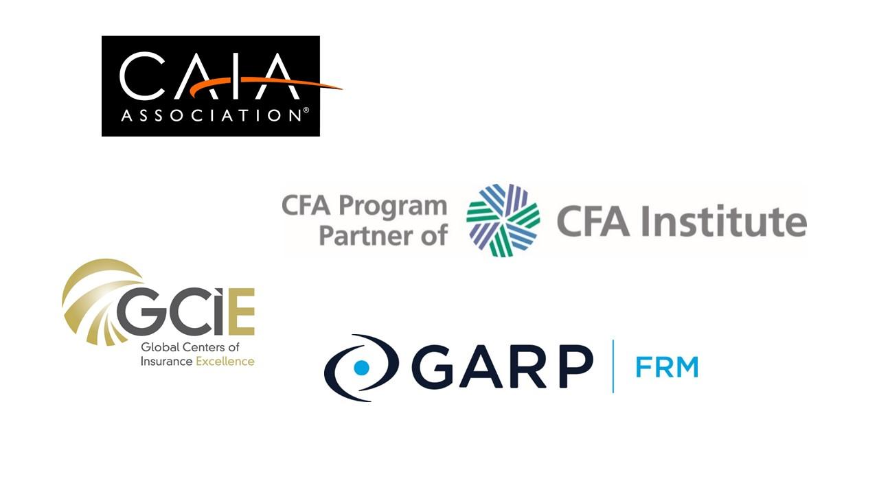 Global Network Partners_en